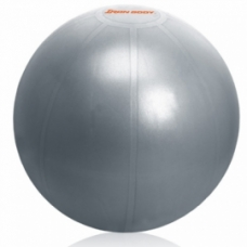 Ballon d'exercices Ballon d'exercices: Ballon IronBody pro 65cm argent avec pompe