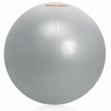 Ballon d'exercices Ballon d'exercices: Ballon IronBody pro 55cm argent avec pompe